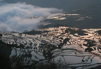 15 Day Yunnan Rice Terraces Photography